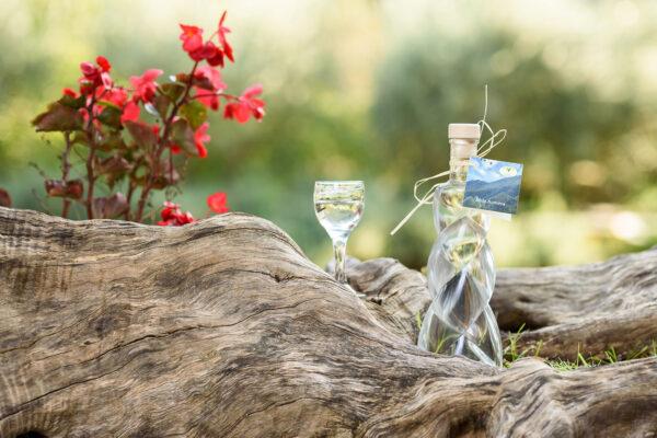 Liquore Mela Annurca - Azienda Agricola l'Uliveto