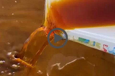 produzione liquore